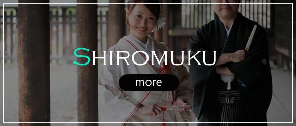 Shiromuku / white kimono collection