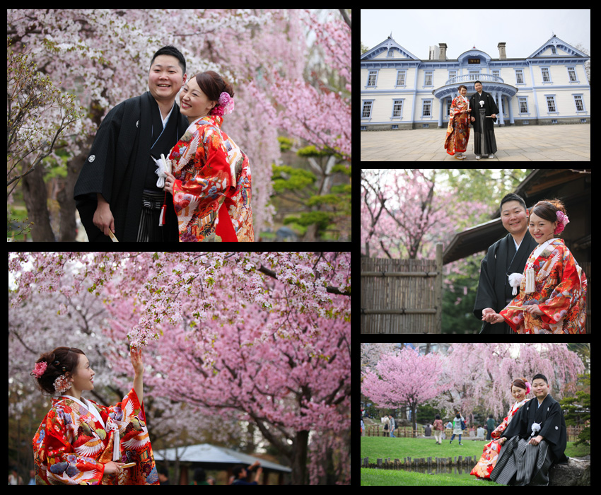 pre-wedding photo in Hokkaido with Sakura